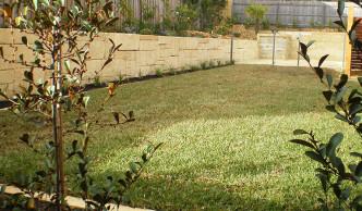 Garden Maintainence